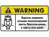 Таблички информационные солнцезащитного козырька с юмором